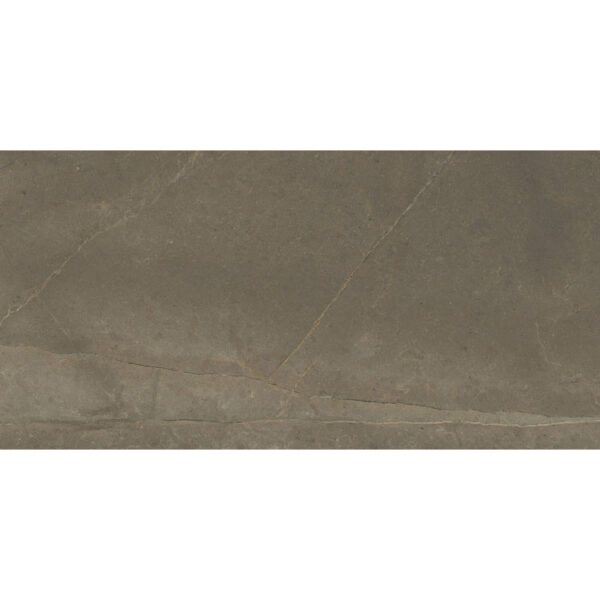 Marmerlook Tegel 120x45 Bruin Hoogglans Fenix Naturale NPlus