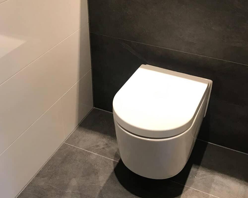 Populair Toilet met Leisteenlook Tegels en Witte Hoogglans Wandtegels - T&L PJ14